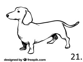 Hund Nr. 21