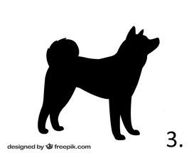 Hund Nr. 3