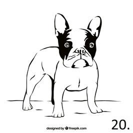 Hund Nr. 20