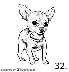 Hund Nr. 32