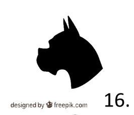 Hund Nr. 16