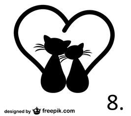 Katze Nr. 8