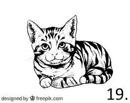 Katze Nr. 19