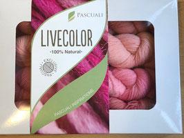 "LiveColor von PASCUALI 4 x 50g Merino Baby Lace ""Rose"""