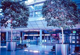 Lockdown Airport 2
