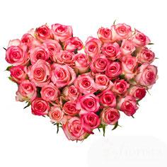 cuore rose rosa