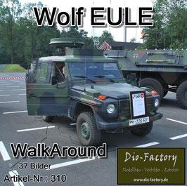Wolf EULE