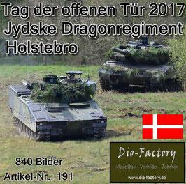 """Jydse Dragonregiment"" in Holstebro 2017"