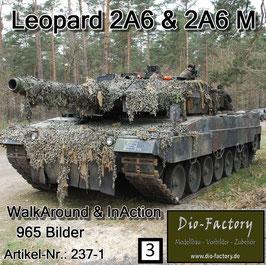 Leopard 2 A6 & 2 A6M