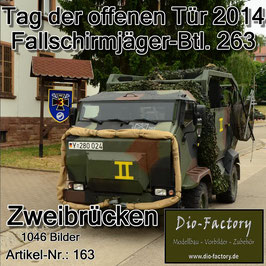 Fallschirmjäger-Btl. 263 in Zweibrücken 2014