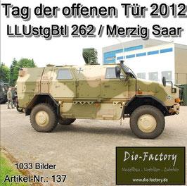 Luftlande-Unterstützungs-Bataillon 262 in Merzig /Saar - 2012