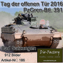 Panzergrenadierbataillon 391 in Bad Salzungen 2016