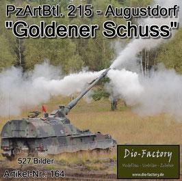 """Goldener Schuss"" PzArtBtl. 215 Augustdorf 2014"