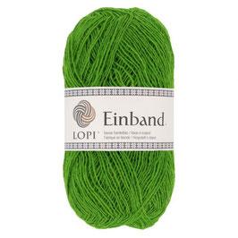 Einband - 1764 grün