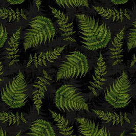 Black Fern Leaves, Chantrell, Wilmington Prints, 07025750518
