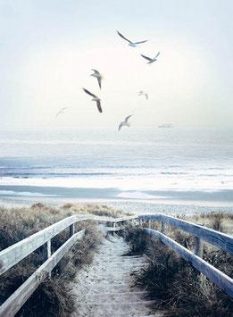 Atlantic, Panel, Hoffman Fabrics 02367050920