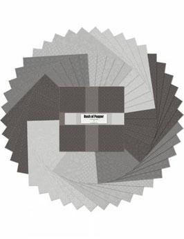 10in Squares Dash of Pepper Essentials  24pcs , Wilmington Prints