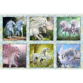 Unicorns, Unicorn Squares - Multi 2UN1, In The Beginning Fabrics 05017950821