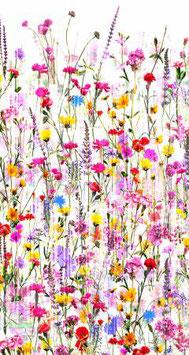 Spring Floral, Digitaldruck,  Hoffman Fabrics 030119501421