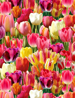 Packed Tulips, Timeless Treasures, 01014850619