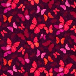 Small Butterflys, Studio E Fabrics, 09300450618