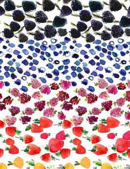 Fruit Ombre, Tree of Life, Dear Stella 02229050621