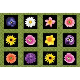Bloom with a View, Maria Kalinowski, Benartex, (Panel), 02084550716