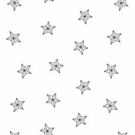 White on White Stars , Ramblings Holiday 2, P&B Textiles 07425650520