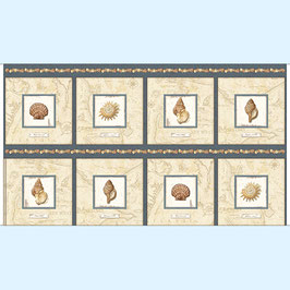 Shell picture patches, Panel, by Charlene Audrey for Quilting Treasures, 04044050816