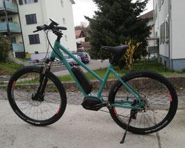 GERBER BIKES / Mountainbike