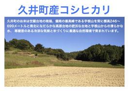 久井町 河野さんのコシヒカリ玄米5kg(29年産)
