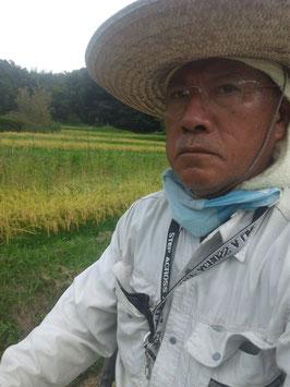 新庄ヒノヒカリ5kg(28年産玄米)