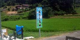 おなし名水コシヒカリ20kg(28年産玄米)
