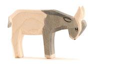 Ostheimer - kleine Ziege