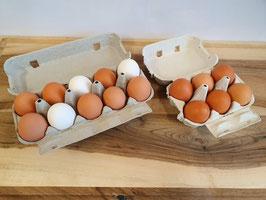 Hühnereier vom Mattenhof