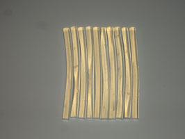 Klebesticks, Ø 7 mm x 10 cm, 10 Stück