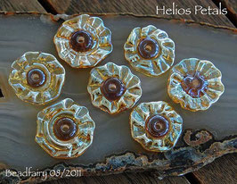 Helios Flower Petals