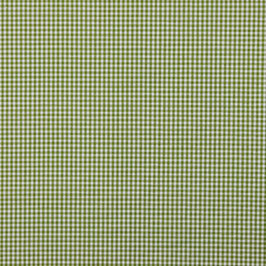 Baumwollstoff Vichy Karo grün/weiß 2mm