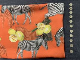Nähpaket Bluse Orange Zebra