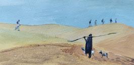 Berger Dunes de Mederdra