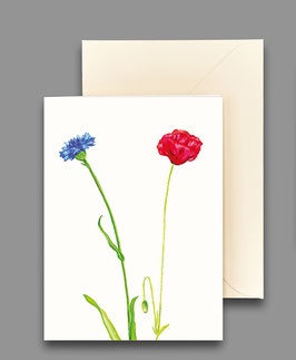 Grußkarte Kornblume und Mohn Artikelnr. kl238