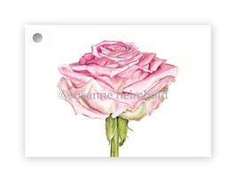 Geschenkanhänger Rose, Artikelnr. gs002