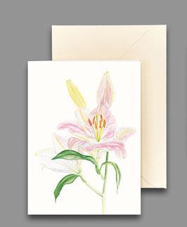 Grußkarte Königslilie  Artikelnr. kl 264