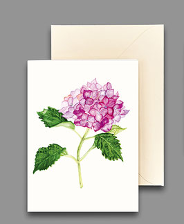 Grußkarte Hortensie rosa Artikelnr. kl232