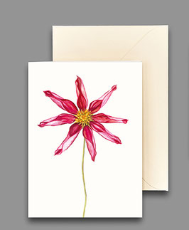 Grußkarte sternförmige Dahlie  Artikelnr. kl228
