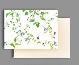 Grußkarte Veilchen und Vergissmeinnicht  Artikelnr. kl 260