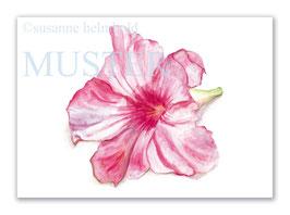 Kunstkarte Dipladenia Artikelnr. sr106