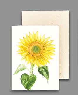 Grußkarte Sonnenblume Artikelnr. kl226
