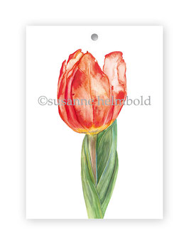Geschenkanhänger Tulpe rot, Artikelnr. gs008