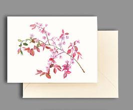 Grußkarte Kirschblütenzweig Artikelnr. kl 243